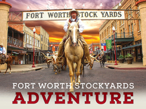 Fort Worth Herd Twice Daily Cattle Drive Fort Worth Stockyards