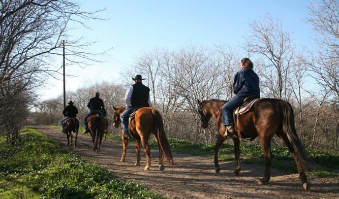 Stockyards Stables Horseback Riding